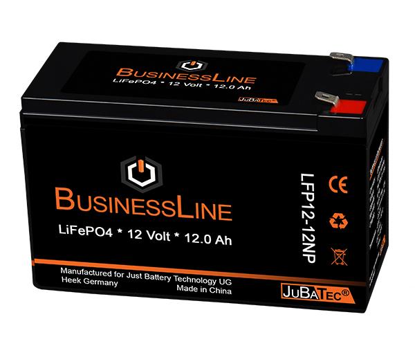 Spinfire Ersatzbatterie Lithium (LiFePO4 Akku) 12V 12Ah mit BMS jubatec4520