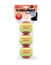 Tennisbälle- Head - 3B HEAD TIP red 3er