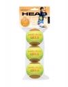Tennisbälle- Head - 3B HEAD TIP orange 3er