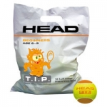 Tennisbälle- Head- TIP orange - 72 Bälle TIP Orange/Polybag
