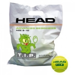 Tennisbälle- Head- TIP green - 72 Bälle TIP green/Polybag