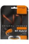 Tennissaite -Babolat D TAC NT Hybrid -  orange  - je 6m