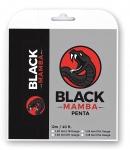 Tennissaite - Black Mamba PENTA - 12 m