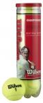 Tennisbälle- Wilson - Championship - 4er Dose