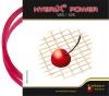 Tennissaite-Kirschbaum Hybrix Power - 2 x 6,5 m