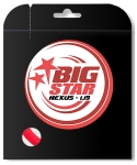 Tennissaite - BIG STAR - NEXUS - 12 m