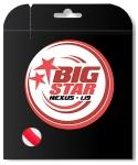 Tennissaite - BIG STAR - NEXUS - 12 m