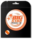 Tennissaite - BIG STAR - POTENZA NPT - 12 m