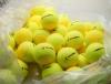 Tennisbälle - TENNISMAN PERFECT TRAINER - 72 Bälle im Polybag - gelb/gold