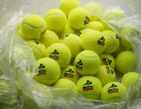 cheap for discount f7685 e0fa7 TennisMan.de | Tennisbälle - DISCHO TRAINER (DELUXE) - 72 ...